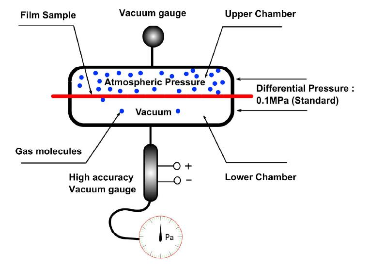 生物知识层次结构图